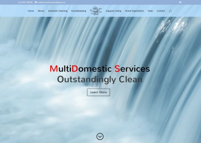 MultiDomestic Services