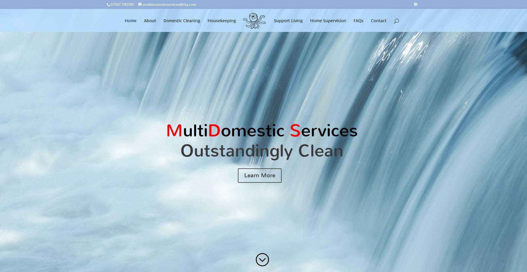 MultiDomestic Services